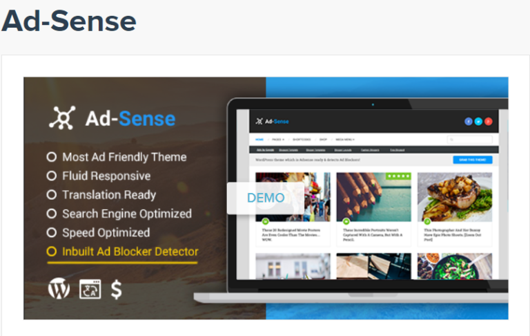 Adsense Theme By MyThemeShop
